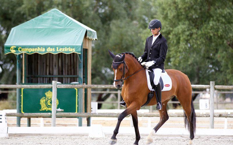 Critérios de Cavalos Novos de Ensino 2019 e Final do Campeonato Regional de Lisboa – Resultados