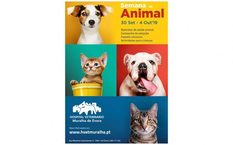 Dia do Animal – Évora