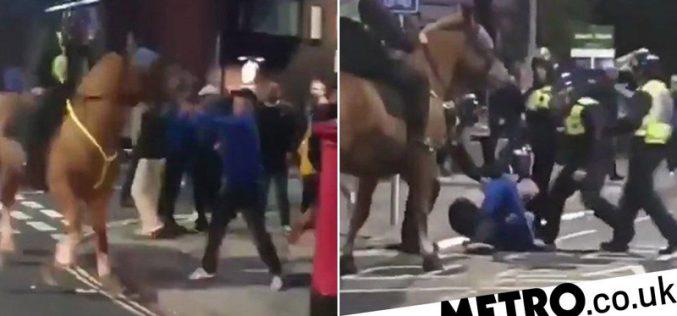 Adepto detido após… agredir cavalo da polícia (VÍDEO)