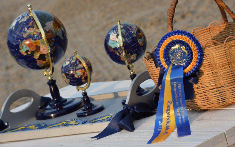 7 Portugueses inscritos no Mundial de Cavalos Novos em Zangersheide