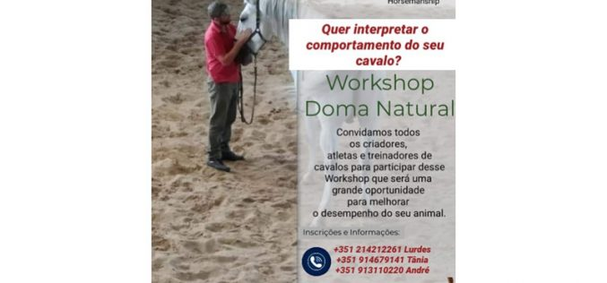 Workshop de Doma Natural – 17 de Novembro