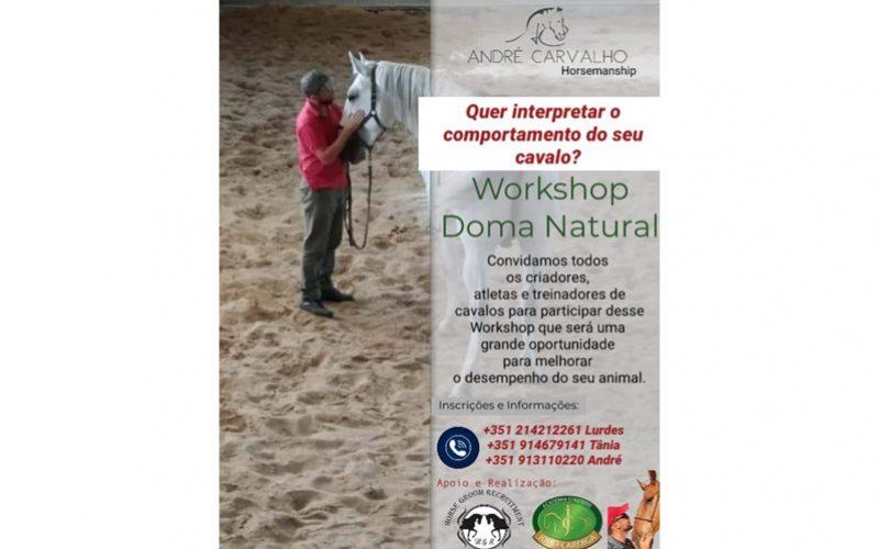Workshop de Doma Natural – 17 de Novembro