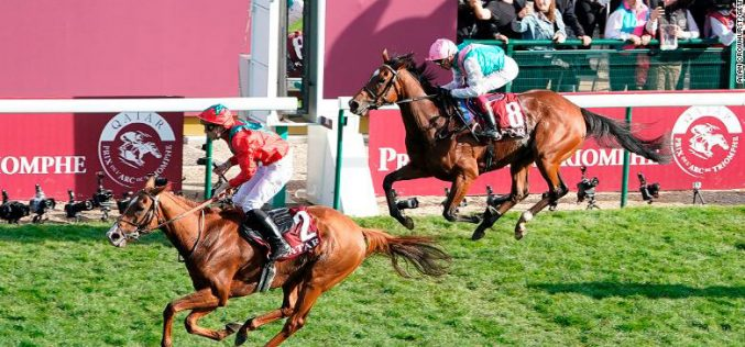 Qatar Prix de l'Arc de Triomphe : «Waldgeist» destrona «Enable» (VÍDEO)