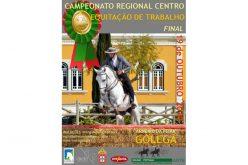 Final do Campeonato Regional Centro de Equitação de Trabalho 2019