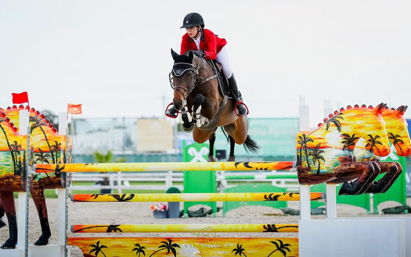 CSIYH1* Vilamoura 2019: Arrancou a 4ª semana de provas de Cavalos Novos – Mandy Costa brilhou