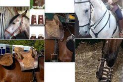 Feira Nacional do Cavalo 2019: Material de Equitação roubado na Golegã