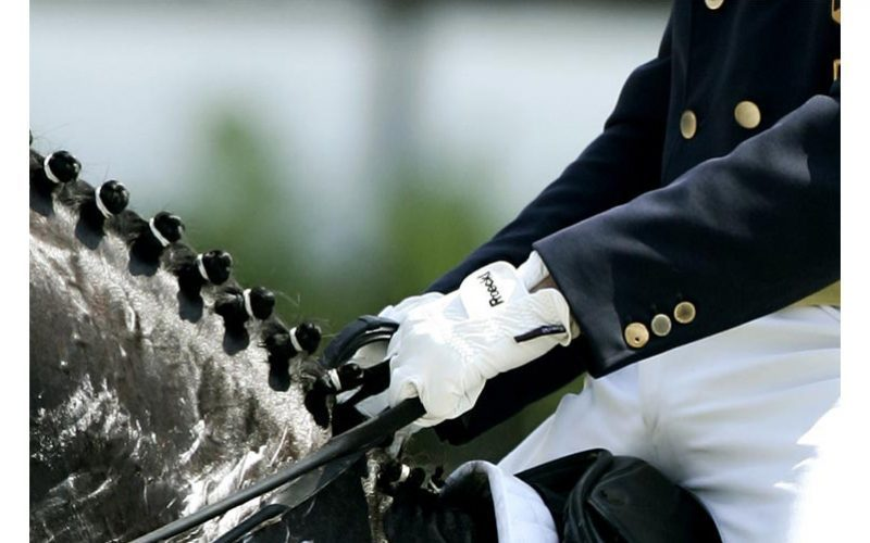 Dressage Calendar Task Force agrees proposals via videoconference