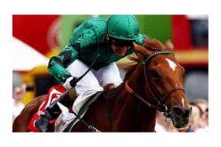 Os dois melhores cavalos de corrida da Princesa Haya