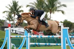 Bertram Allen wins WEF debut with old trusted friend