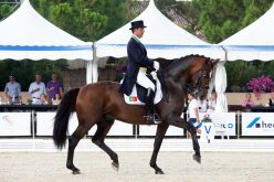 Daniel Pinto no Alter International Horse Summit
