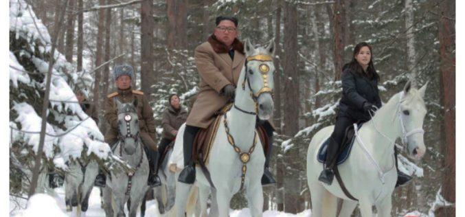 Coreia do Norte gasta mais de meio milhão doláres em cavalos