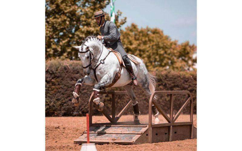 Resultados: I Jornada Campeonato Regional Centro de Equitação de Trabalho 2020
