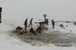 Cavalos que caíram em buraco no gelo salvos (VÍDEO)