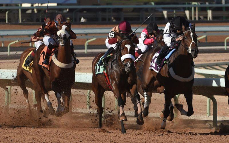 14 Cavalos inscritos na Saudi Cup