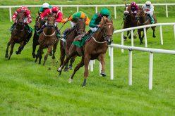 Covid-19: Corridas de Cavalos à porta fechada até fins de Março