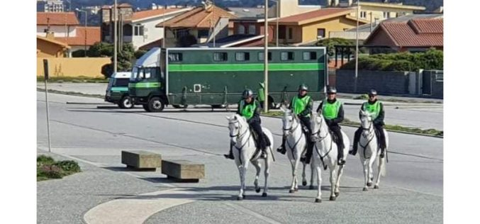 Covid-19:  GNR a cavalo patrulha zona de Mindelo