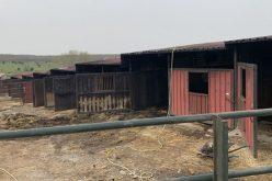 Espanha: Incêndio de grandes dimensões atinge Yeguada la Perla