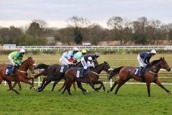 Grã Bretanha: Contagem decrescente para as corridas de cavalos