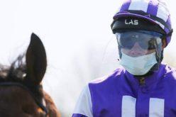 Corridas de Cavalos: Jóqueis sujeitos a testes de saliva, controlo de temperatura e máscaras faciais…