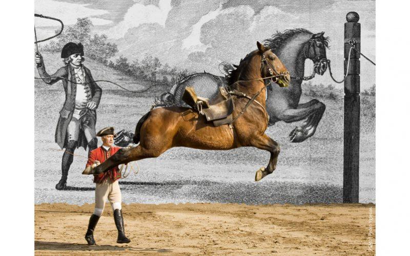 Escola Portuguesa de Arte Equestre reabertura antecipada em Junho