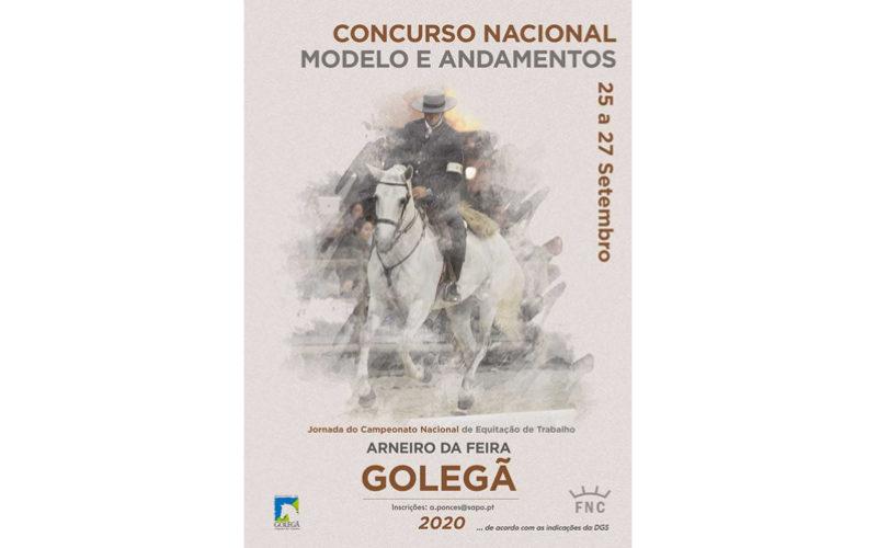 Golegã 2020: Modelo e Andamentos e Equitação de Trabalho em Setembro