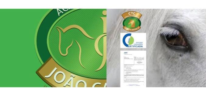 Academia Equestre João Cardiga obtém certificação da DGERT