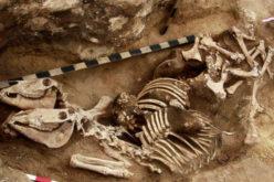 Arqueólogos encontram evidência de equitação na Idade do Bronze