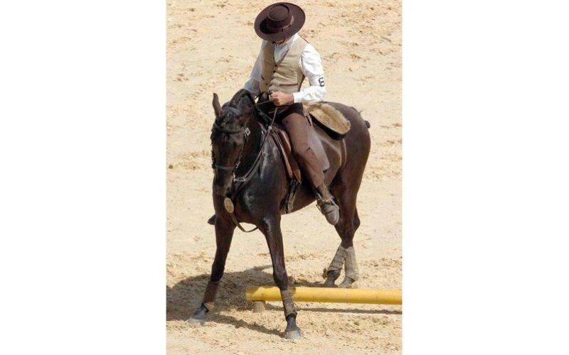 Troféu APSL de Equitação de Trabalho