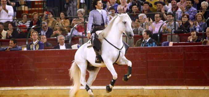 Faleceu «Dólar», um dos cavalos craque de Diego Ventura