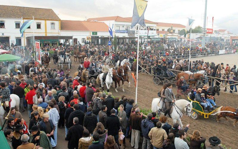Covid-19: Feira Nacional do Cavalo da Golegã cancelada