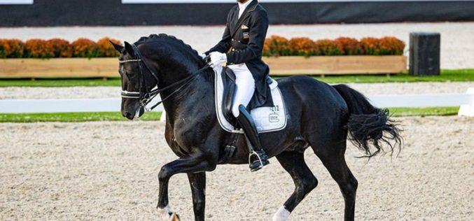 Edward Gal e «Toto» campeão de Dressage da Holanda (VÍDEO)