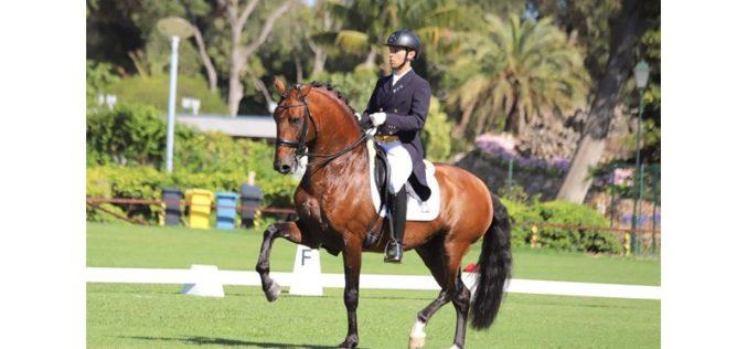 «Escorial» vendido ao Grupo de Investimentos JRME-Horse Campline