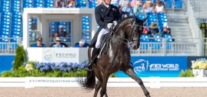 Urina do tratador na box leva a penalização do cavalo por doping