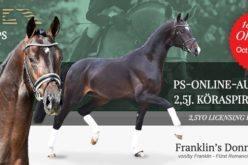 PS-ONLINE AUCTION – 2,5yo Licensing Prospects – October 18, 2020 to October 20, 2020