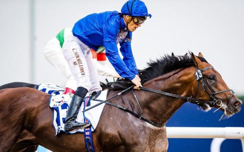 Corridas de Cavalos: Prognosticos para esta semana