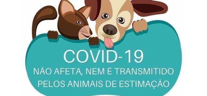 Covid-19: Conselhos das organizações de saúde animal