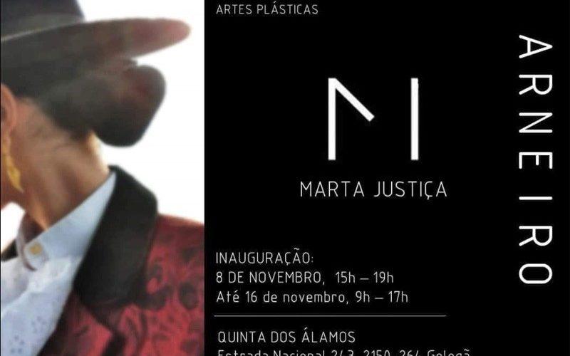 """Exposição """"Arneiro"""" da artista plástica Marta Justiça"""