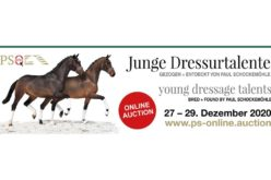PS online auction collection for young dressage talents bred by Paul Schockemöhle