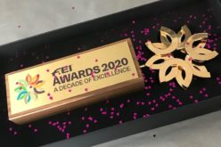 FEI Awards 2020: Fans elect ultimate best from a decade of excellence