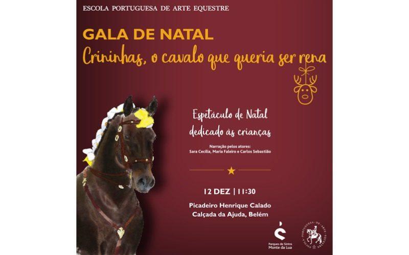 Escola Portuguesa de Arte Equestre realiza espectáculo de Natal a 12 de Dezembro