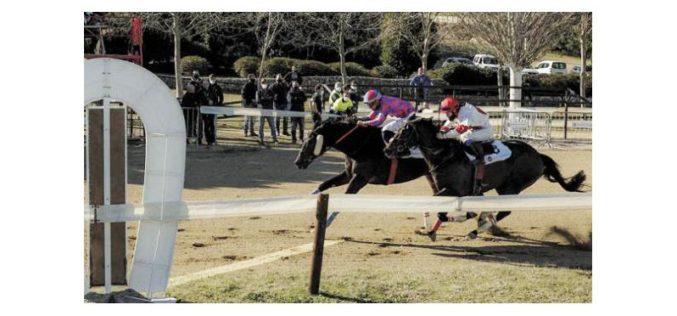 Portugueses destacam-se no Hipódromo em Tarragona (VÍDEO)