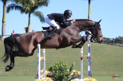 Bertram Allen and Pacino Amiro Soar to Victory in the $37,000 Challenge Cup Round 2