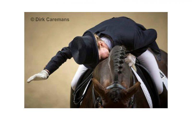 Federação Equestre Portuguesa aposta na formação de Juízes