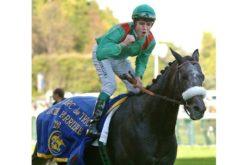 Morreu «Dalakhani» um dos melhores cavalos de Aga Khan