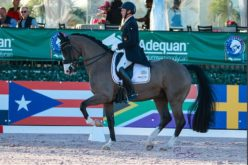 Christoph Koschel Tops FEI Grand Prix CDI4*