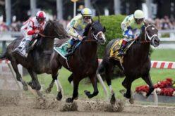 Apostar em Corridas de Cavalos