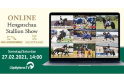 Online Show of Paul Schockemöhle's and Andreas Helgstrand's stallion stations