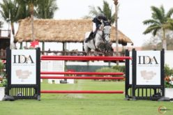 Irish Bertram Allen notches another Grand Prix