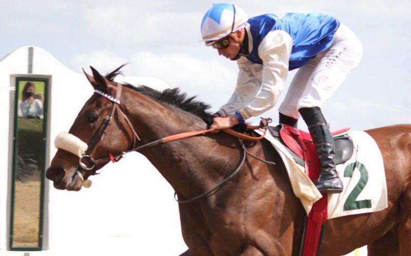 Cavalos, Jóqueis e Preparadores Nacionais com bons resultados em Sevilha (VÍDEO)