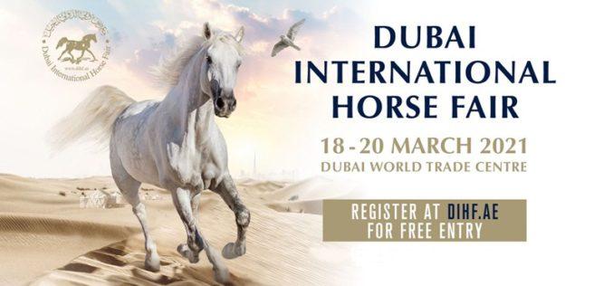 Arrancou a 18ª edição do Campeonato Internacional do Cavalo Árabe do Dubai